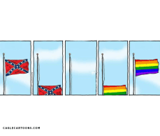 two flags fall and rise June 2015