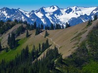 Mount Angeles Trail in Olympic National Park
