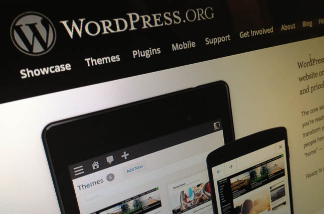 WordPress Screen Pic