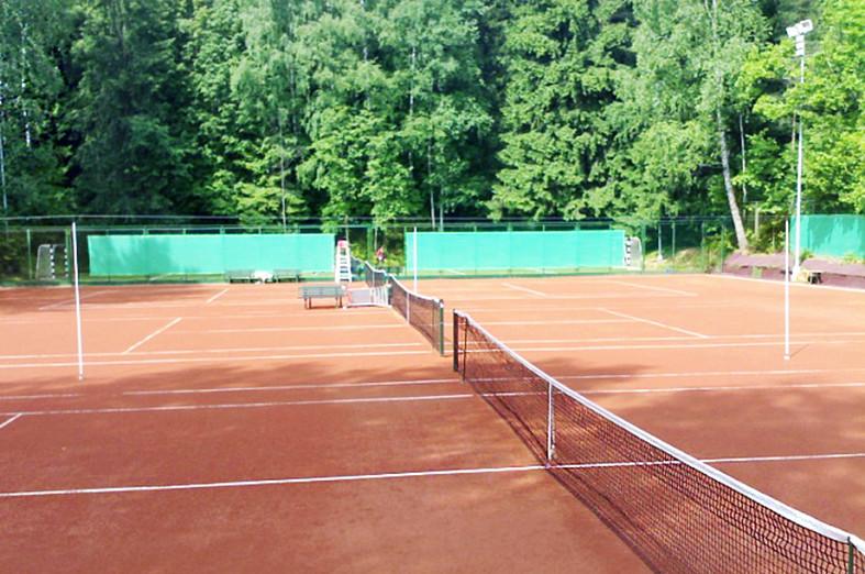 Постройку теннисного комплекса на севере Москвы отложили на 3 года