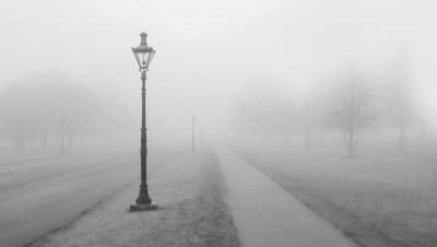 В Ленобласти ожидается туман с мокрым снегом