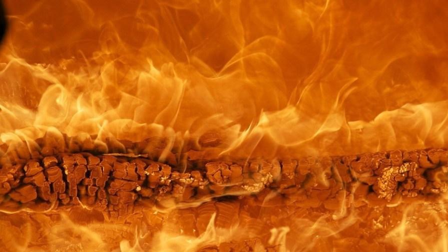 В Ленобласти загорелось здание частного хосписа