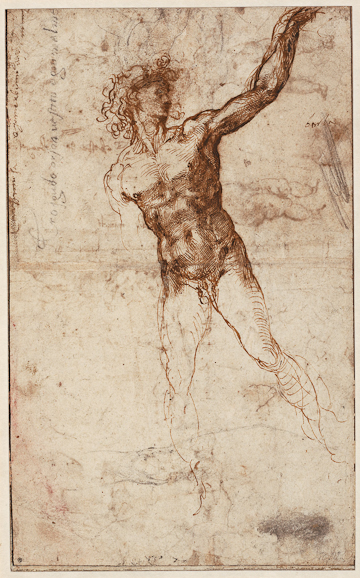 Michelangelo Buonarroti,  Recto: Young Man in Movement and a Leg Stduy, c. 1503-1504, pen and ink in two colors over black chalk. British Museum, London.