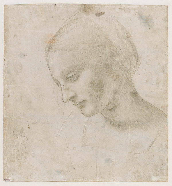 Leonardo da Vinci (1452–1519), Head of a woman, about 1488–90, Metalpoint heightened with white on pale blue prepared paper, 17.9 x 16.8 cm, Musée du Louvre, Paris, Département des Arts Graphiques (2376), © RMN / Thierry Le Mage