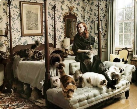 Cat Lady Chic [credit: indulgy.com]