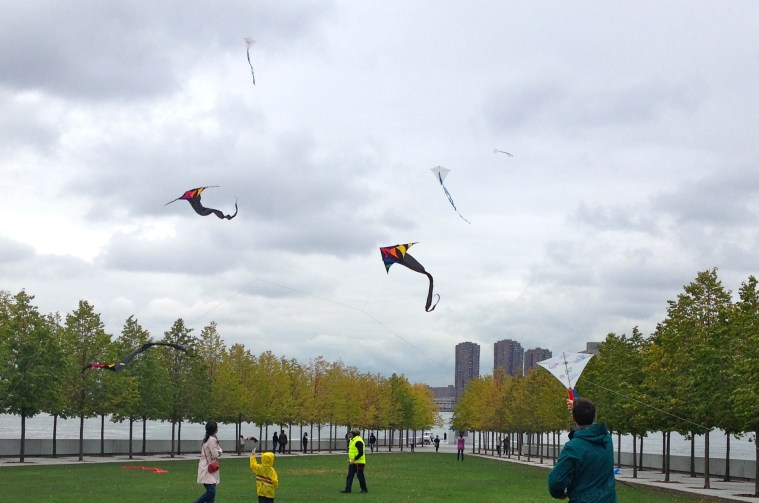 fall-for-arts-roosevelt-island-kites