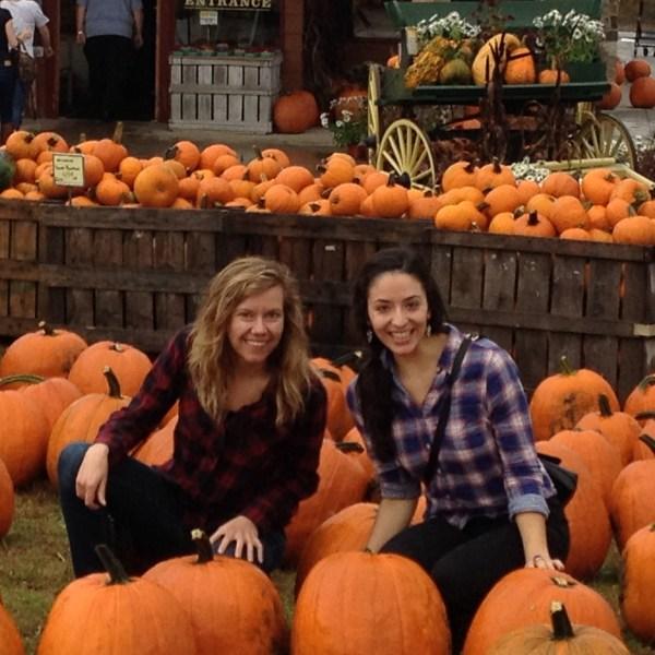 pumpkins typical fall