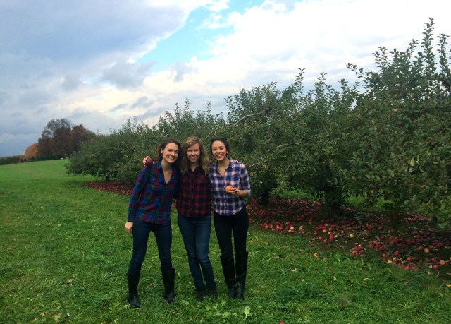 apple picking matching flannel