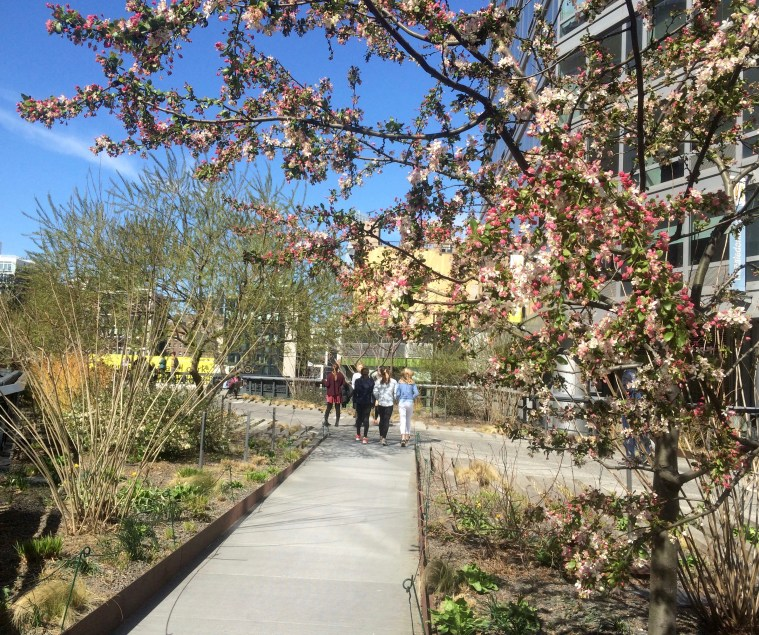 nyc-spring-high-line
