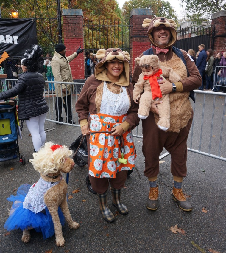 halloween-dog-parade-3-bears-goldie-locks