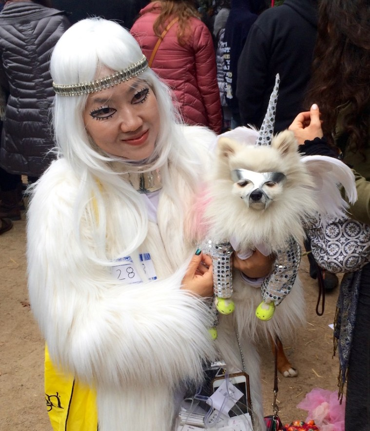 halloween-dog-parade-nyc-unicorn