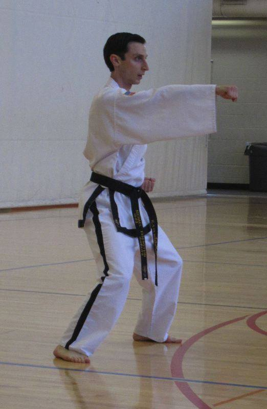 michael eisenstein tae kwon do nerdy assassin