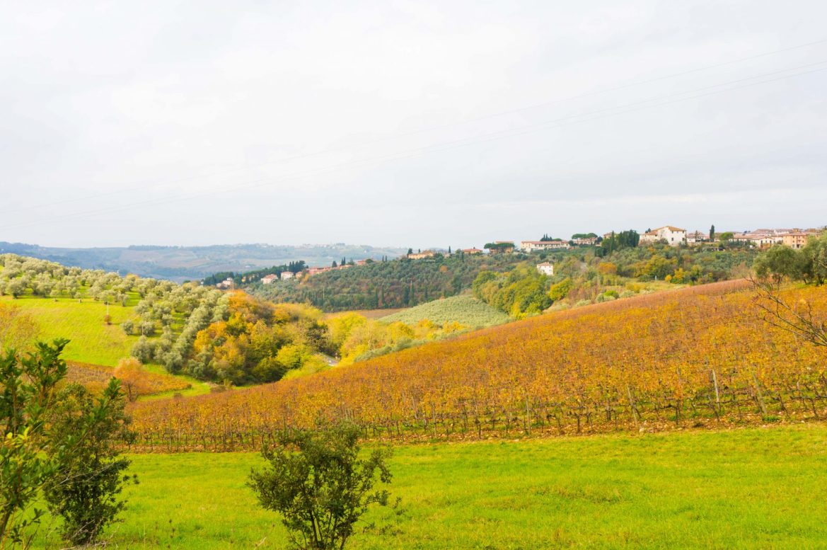 tuscany tours from Florence