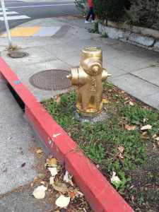 fire hydrant ticket avoided with red painted curb