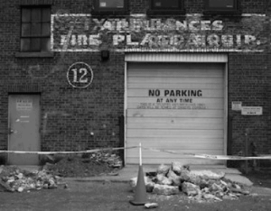 This image of a garage door in NYC contains the words, no parking