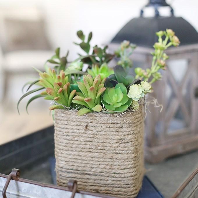 Upcycled-Kleenex-Succulent-Planter-7-copy