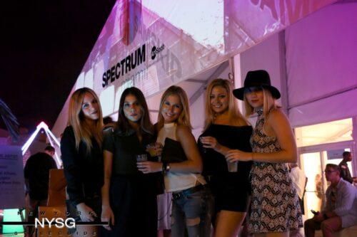 Spectrum Miami Art Show 2015 3