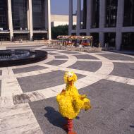 10_big_bird_lincoln_center