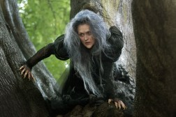 Into the Woods movie adaptation