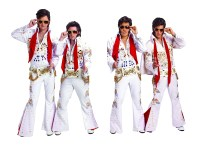 ElvisesinHoneymooninVegas