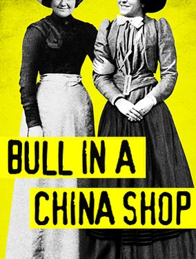 bull_in-a-china-shop