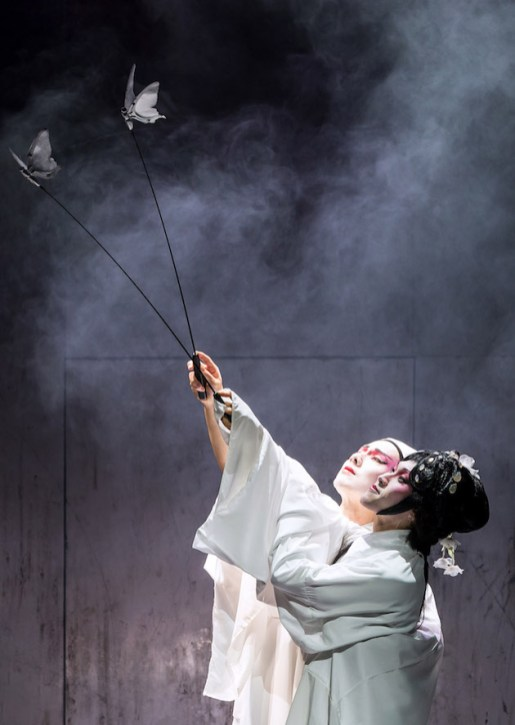M Butterfly 7 Scott Weber, Jin Ha