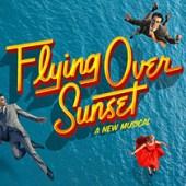 flying over sunset logo