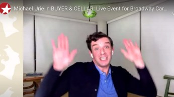 Buyer & Cellar, Michael Urie