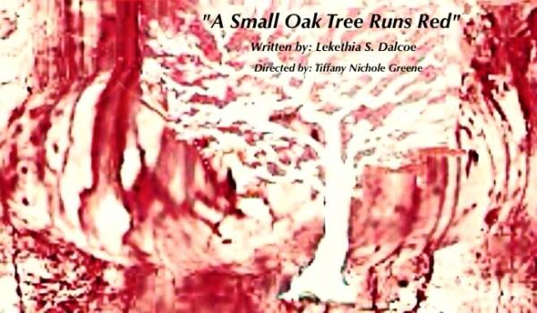 A small oak tree new