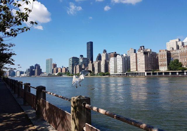 Roosevelt Island, une vue incroyable sur Manhattan.