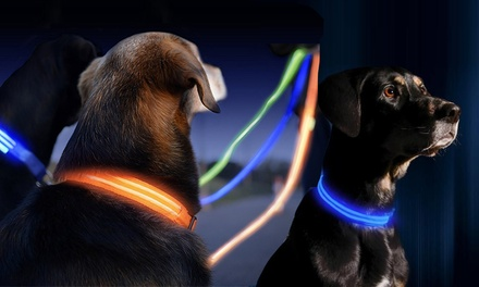 Rechargeable LED Dog Collar and Leash: One ($12) or Two Sets ($19)