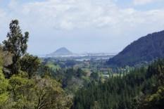 Mt. Maunganui aus der Ferne