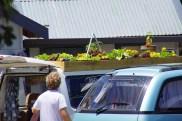 Obstgarten auf dem Dach