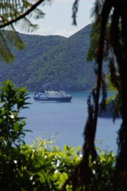 die Ferry zwischen Wellington und Picton