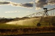 Bewässerungsanlage im Sonnenuntergang am SH 7, kurz vor Christchurch