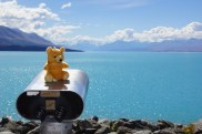 Teddy am Lake Pukaki und Mt. Cook