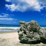 芒格怀(Mangawhai)海滩