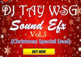 DJ TAY WSG - SOUND EFX PACK VOL. 5 (CHRISTMAS SPECIAL) (EFX 2017) 9