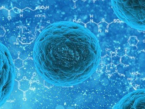 """""""Coronavirus-Variante geht möglicherweise mit erhöhtem Sterberisiko einher"""""""