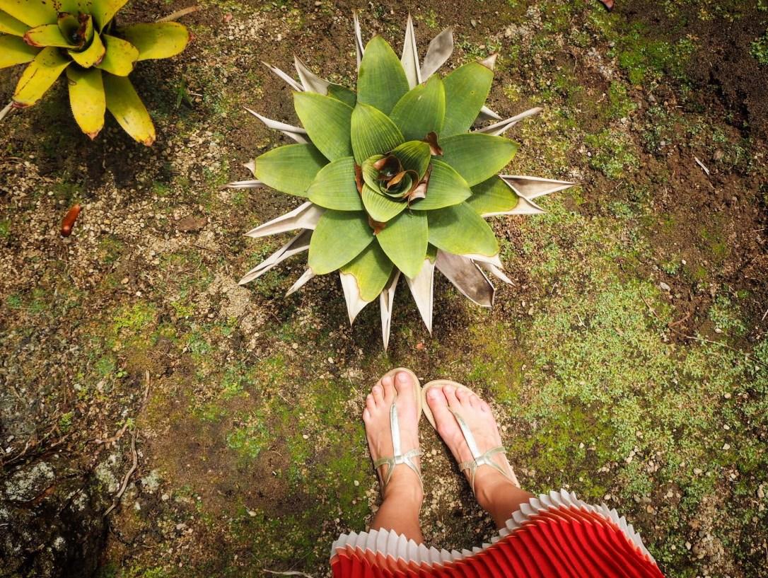 Standing in le Jardin de Balata