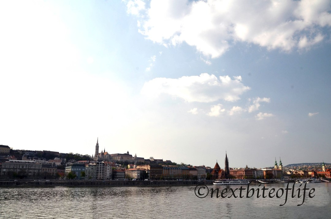 views from the danube