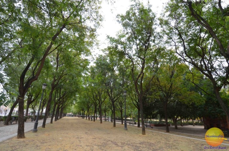 Simple pleasures: Walking in the park in Seville