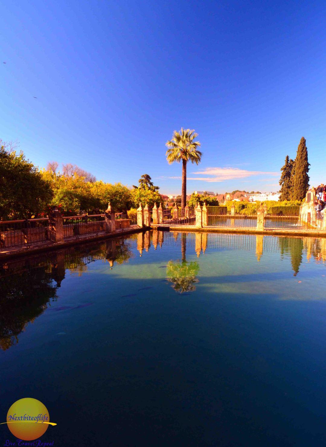 alcazar of cordoba pond