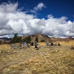 401 trail