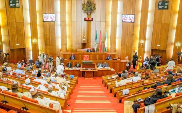 How Nigeria Senate Voted To Amend the 1999 Constitution