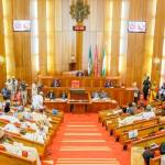 How Nigeria Senate Voted To Amend the 1999 Constitution