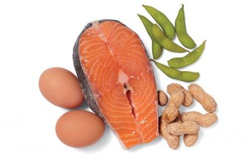 NO-training-protein-546x346