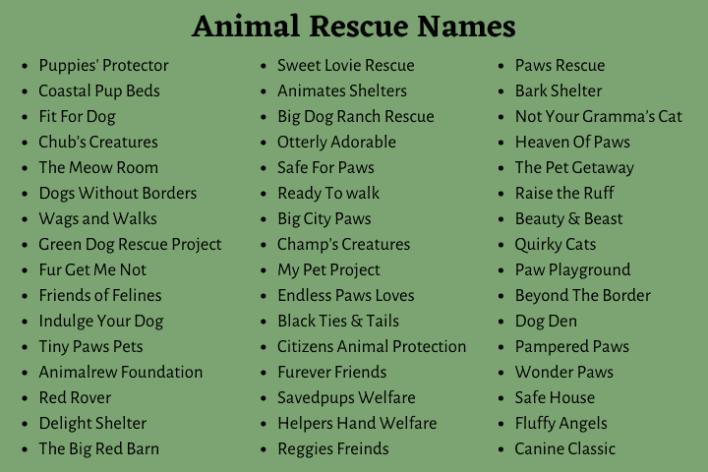 Animal Rescue Names