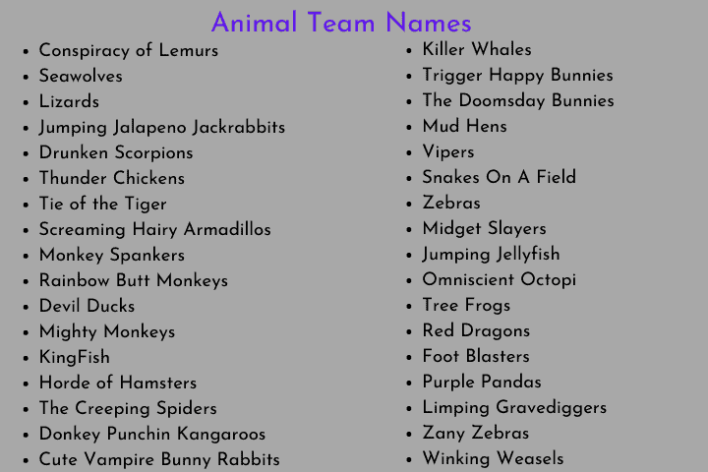 Animal Team Names