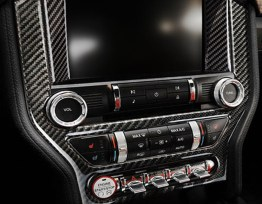 Carbon Fiber Radio Trim Cover | 2015-2020 Ford Mustang